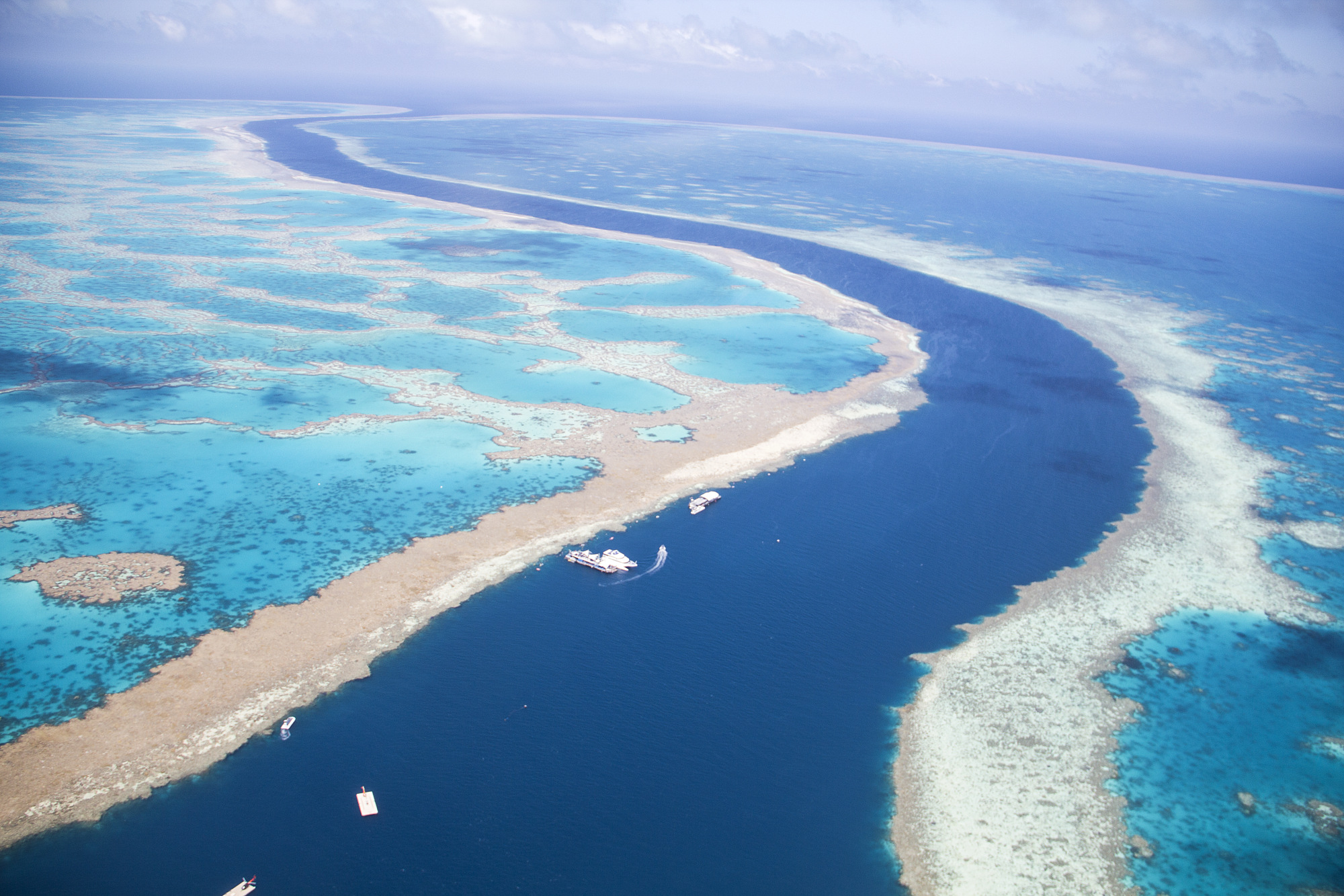 Great Barrier Reef Showing Signs Of Recovery Bloomberg Parfum Mobil Karakter Line 1st Edition