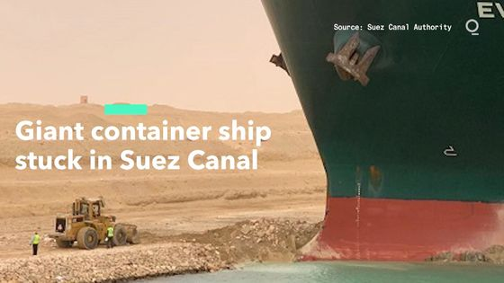 What's Backed Up at the Suez Canal? Live Animals, Oil and Food