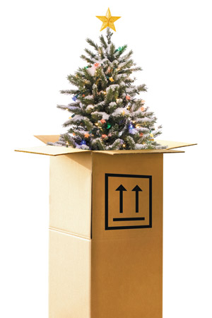 Online Christmas Tree Orders Rising as Convenience Trumps Tradition