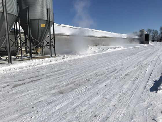 Farmers Forge Ahead as Cold Snap Freezes America's Midwest