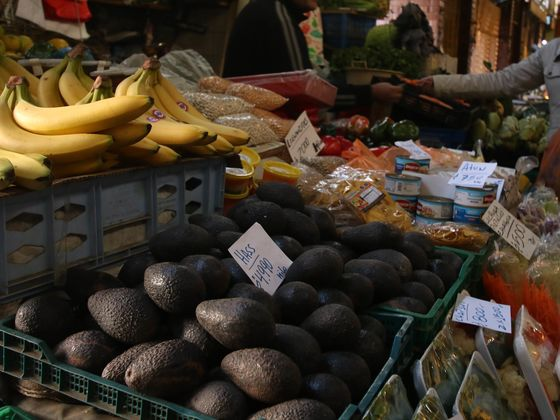 Crime Wave Hits Chilean Farms Amid Europe's Avocado-on-Toast Fad