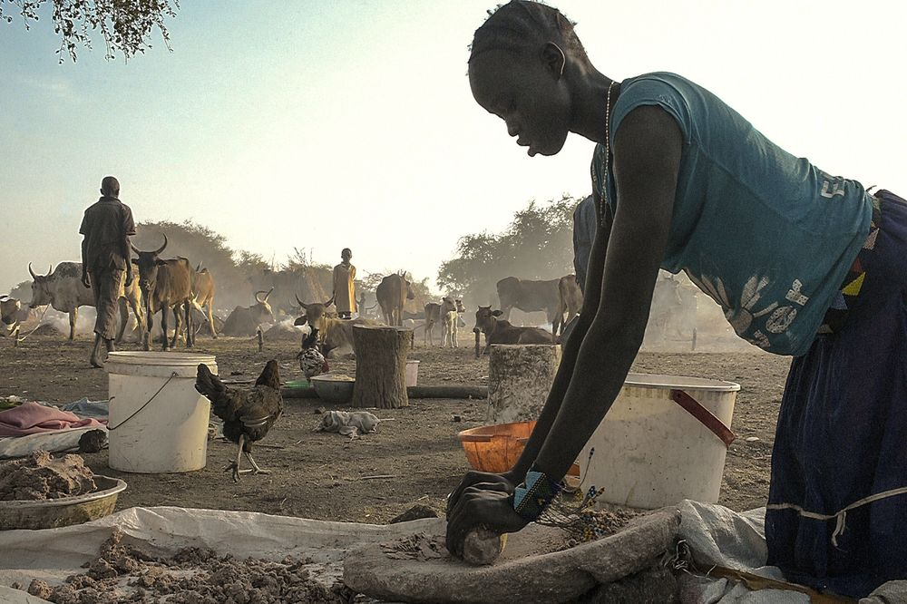 S  Sudan Seeks $500 Million Loan From African Export-Import Bank