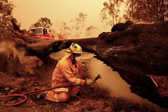 Celebrities Pledge Support for Wildfire Crisis: Australia Update
