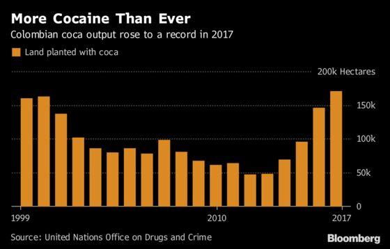 Colombia Cocaine Output Soars to Clinton-Era Peaks, Defying U.S.