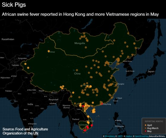 Pig Disease Jumbles Pork-Trade Routes as Canada Turns to China