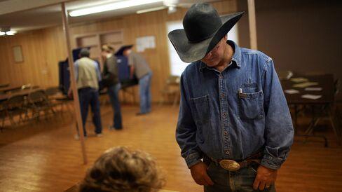 Texas Voter