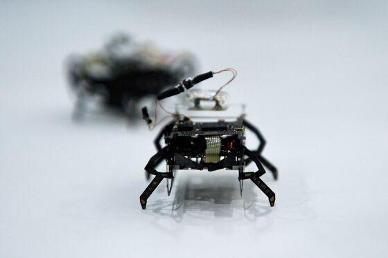 The Cockroach Bots Roaming FarnboroughAir Show