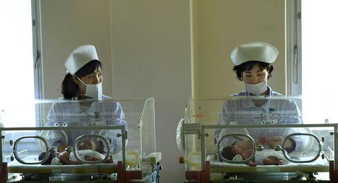 Premature babies at Pyongyang's maternity hospital.