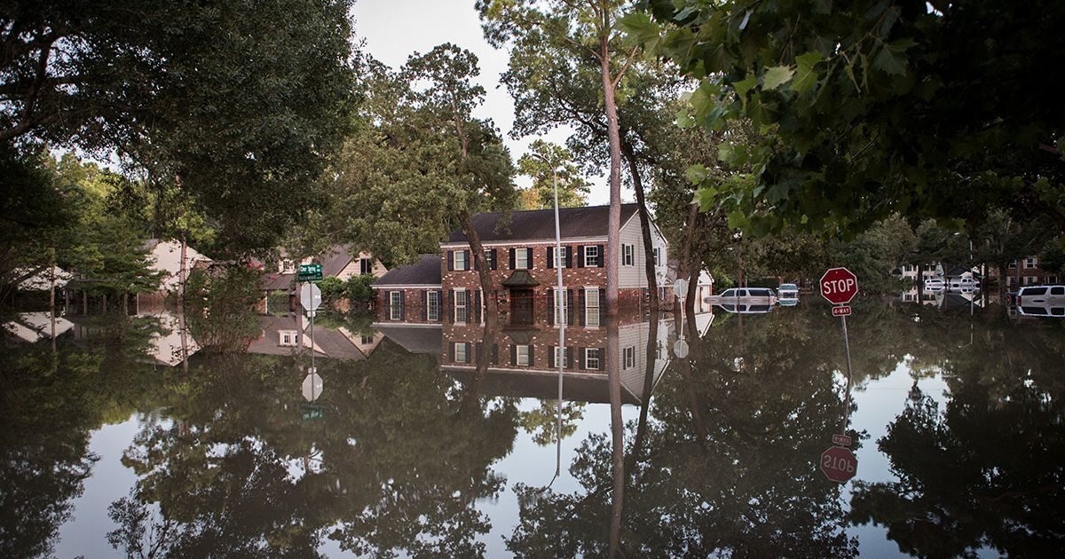 Investors Search Houston Looking to Buy From Panicked Homeowners
