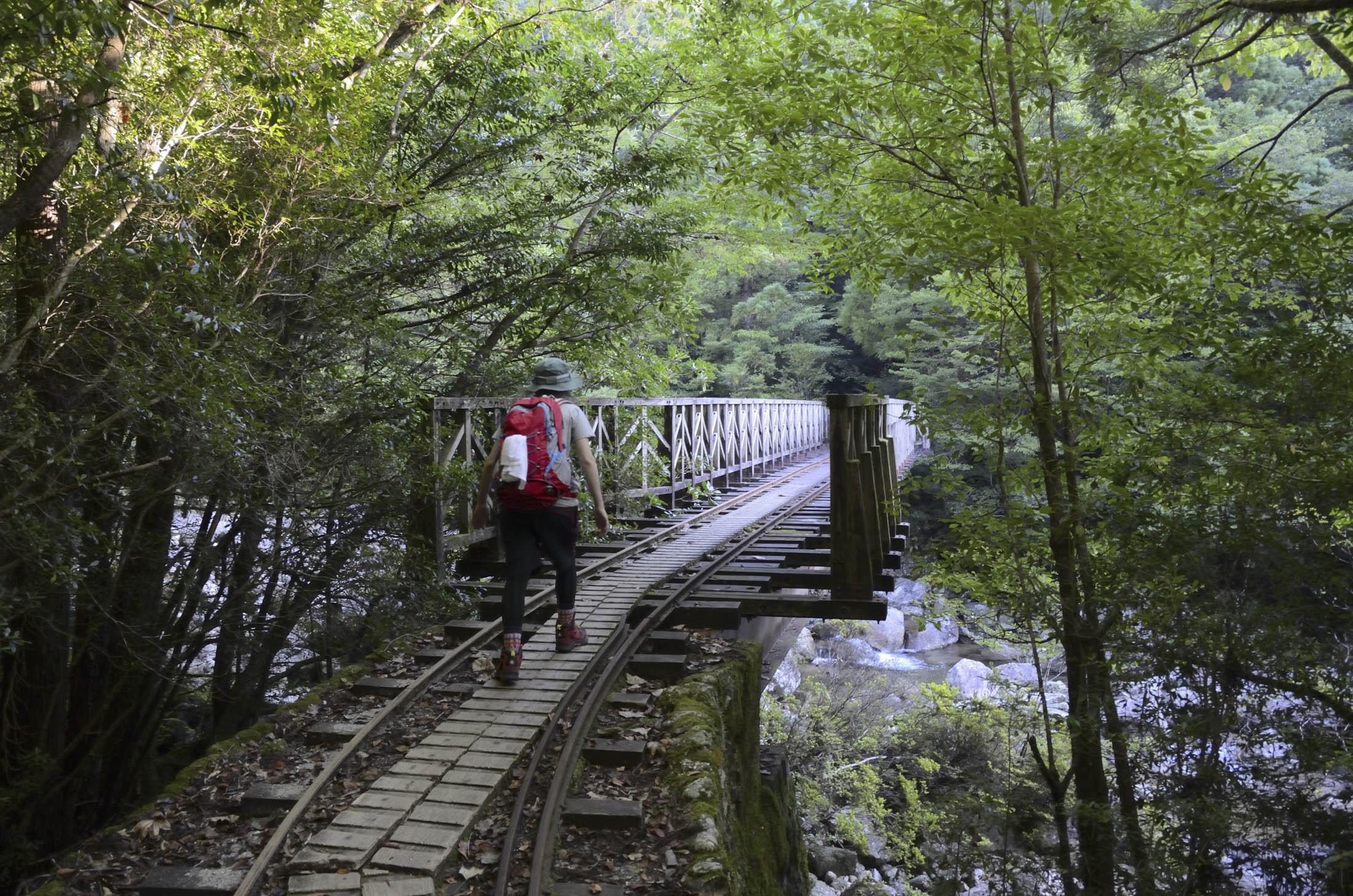 Hiking, Yakushima