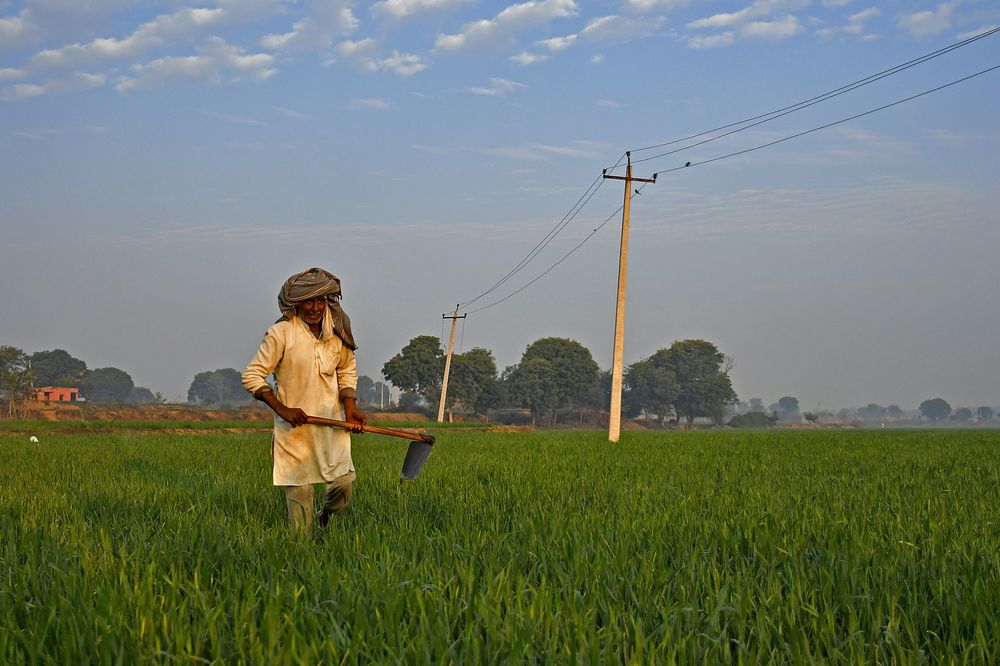 One Budget, Nine Elections, 1.3 Billion People: India's Big Year