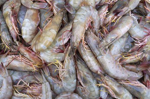 Shrimp Prices