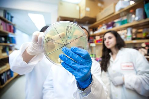 David Weiss, director of the Emory Antibiotic Resistance Center, points to a culture of an unusual form of drug-resistant bacteria.