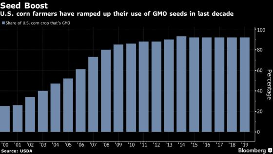 U.S. Corn Crop Is Now 92% Genetically Modified
