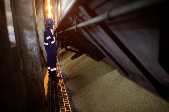Bumper Crops and Stable Trade Boost Prospects for Brazil Railway
