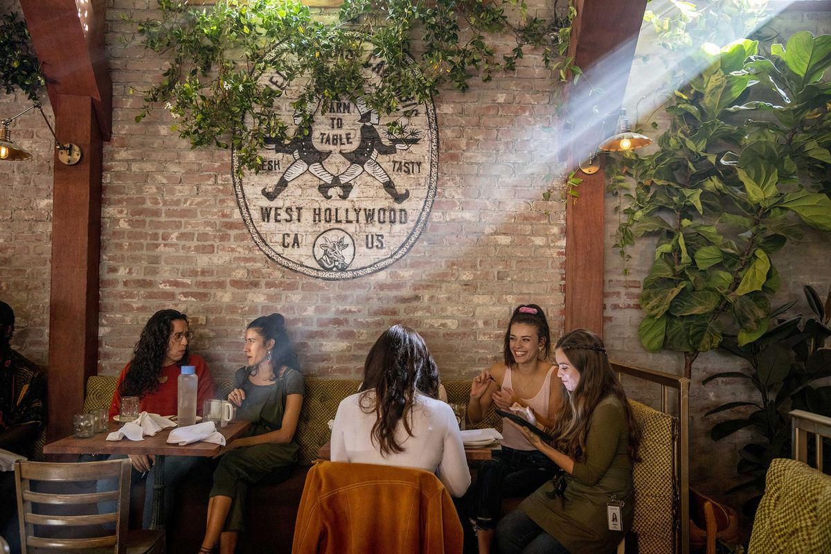Inside America's First Cannabis Cafe