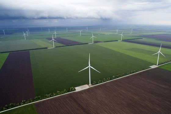Governments Want You to Buy Green. Ignore Them at Your Peril