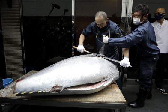 Tuna Sells for Just 10% of 2020 Price at Tokyo New Year Auction