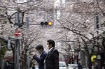 Pedestrians cross a road under cherry trees in bloom in Tokyo's business district, Japan.