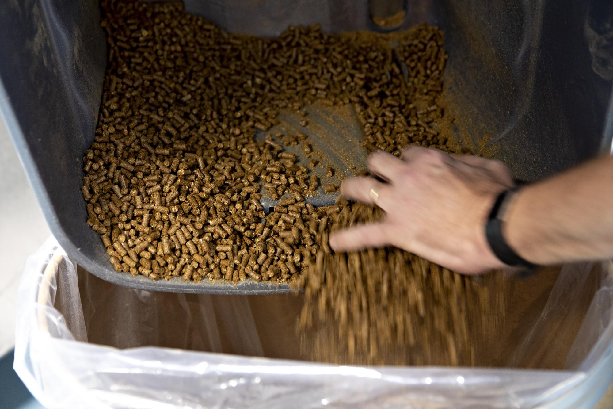 Pet-Food Boom Drives Crop Giant ADM's Push in $91 Billion Market