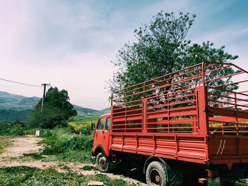 A truck on the farm that supplies much of the Palazzo Margherita's produce, cheeses and grains. Menus at the hotel reflect the region's famous pastas, breads, and pizzas.