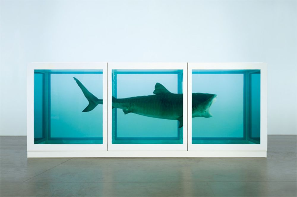 Damien Hirst Jumping The Shark Bloomberg