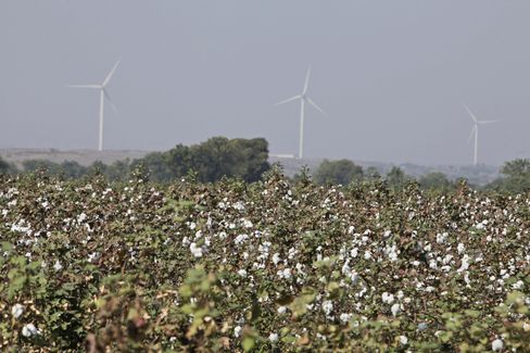 India to Scrap Cotton-Export Ban