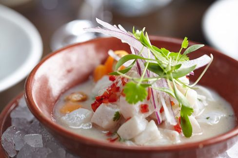 Dishes at Coya, a fine and rather expensive Peruvian restaurant, may include seabass classico ceviche.