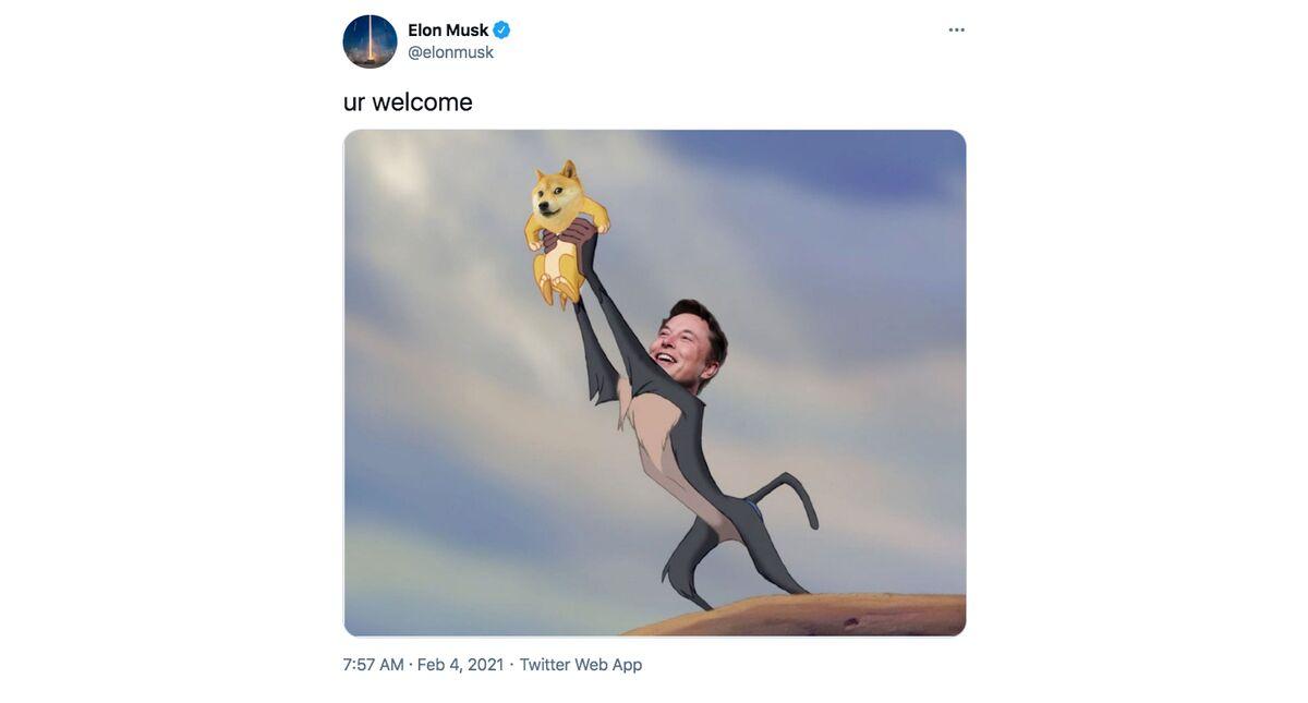 Kryptomarkt jubelt über Elon-Musk-Aussagen – Bitcoin steigt deutlich