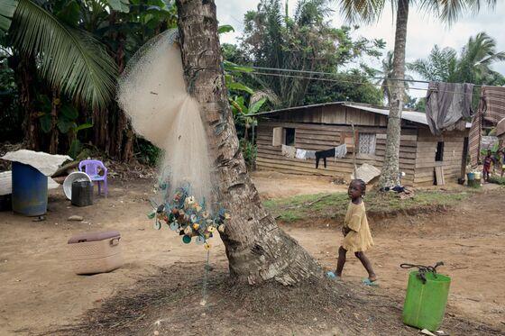 Chinese-Built Port Evokes Dreams of El Dorado in Cameroon