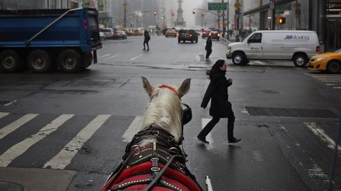 NYC HORSE CARRIAGES 2