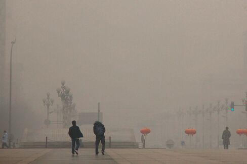 On China's Web, Green Activists Grow Bolder