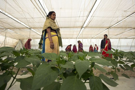 Modi Hopes $27 Billion Bet on Women Will Swing Election His Way