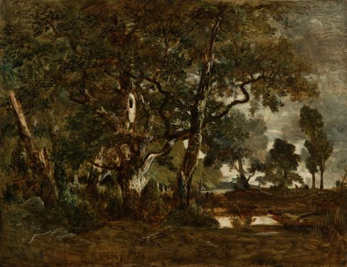Théodore Rousseau, Forest of Fontainebleau, Cluster of Tall Trees Overlooking the Plain of Clair-Bois at the Edge of Bas-Bréau, circa1849-1852.