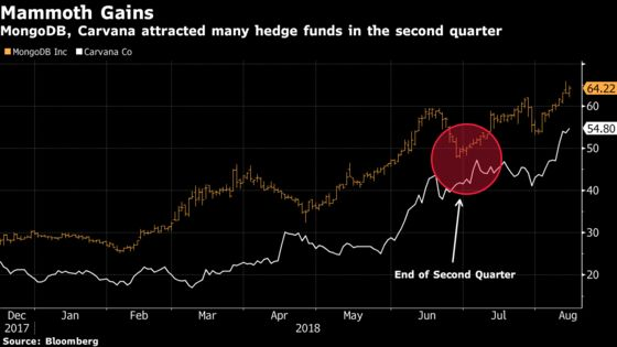 Hedge Fund Hidden Gems Lurk Deep Inside the 13Fs: Taking Stock