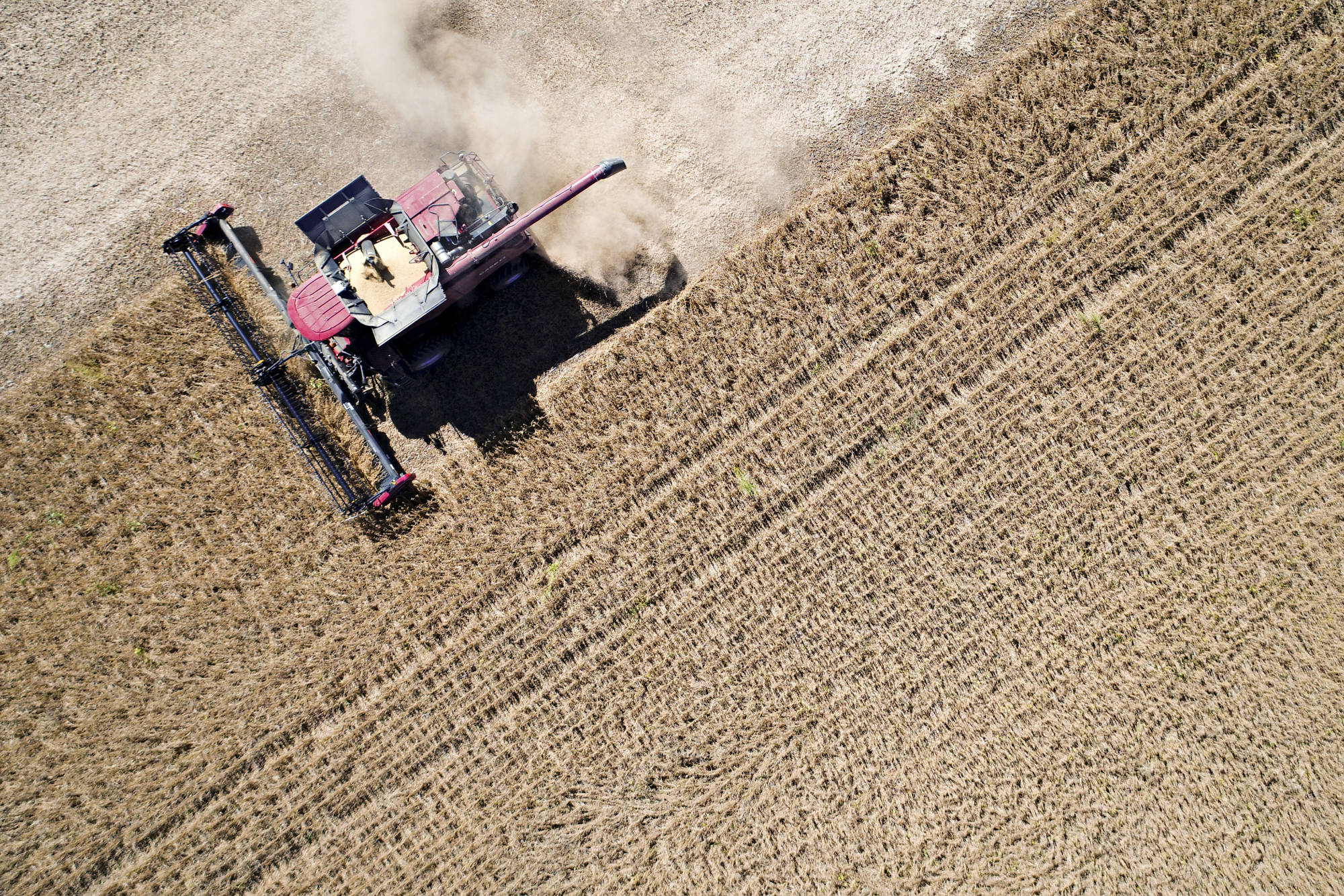 bloomberg.com - Jeff Kearns - U.S. Farm-Export Prices Drop Most Since 2011