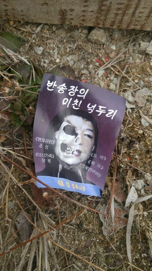 Leaflet showing Park Geun Hye's portrait juxtaposed with a skull