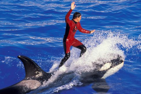 The Business Behind the SeaWorld IPO