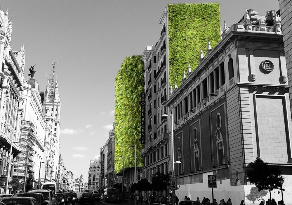Madrid Has A Big New Green Plan That Funds Gardens And Parks And Bans Cars Bloomberg