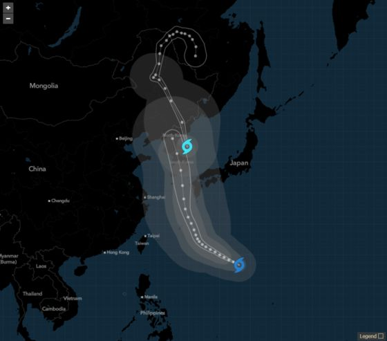 Cargo Ship Carrying 43 Crew and 5,800 Cows Missing in Typhoon