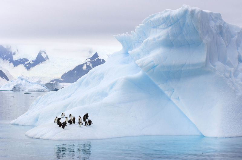 Россия подождет $70 за баррель, чтобы вернуться в Арктику