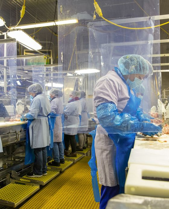 Scared and Sick, U.S. Meat Workers Crowd Into Reopened Plants