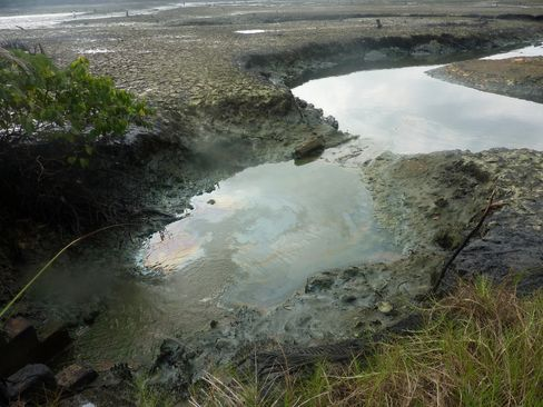 A Polluted River is seen in Goi