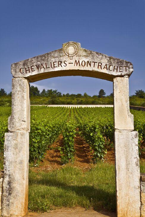 Stone pillars mark the Chevalier-Montrachet vineyard, one of Burgundy's five grand crus for chardonnay.