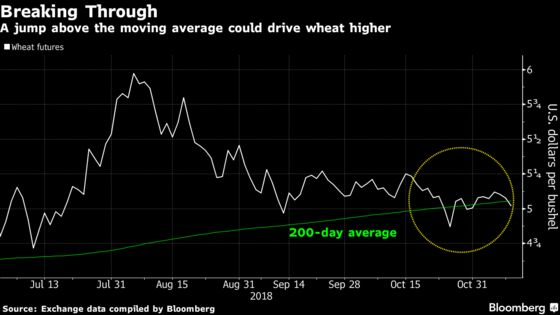 Nasty Weather Means Kansas Farmers Stop Planting Winter Wheat