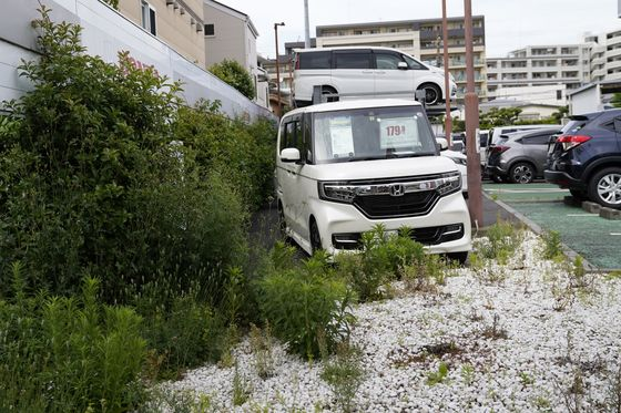 Push to Go Electric Could Wipe Out Japan's Cheap Microcars