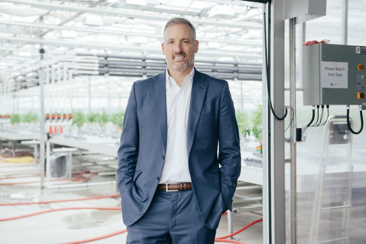 CannTrust Jumps After Firing CEO Amid Breach at Cannabis Company