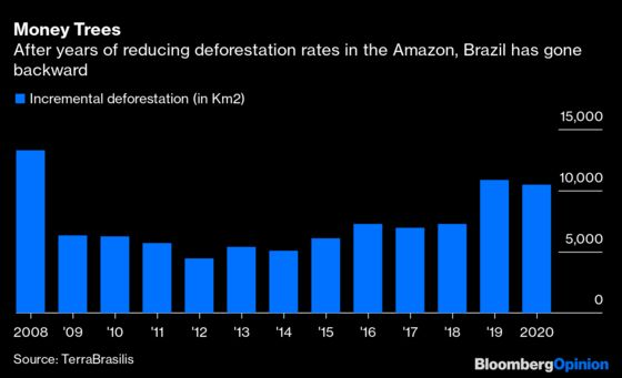 Brazil's Top Court Can Stop Bolsonaro's UnjustLand Grab