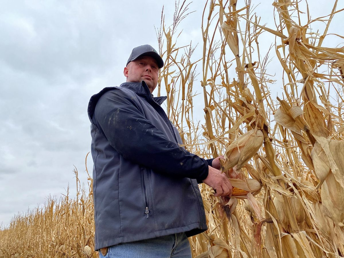 Iowa Farmer Finds Fortune in Selling Carbon Credits to Shopify