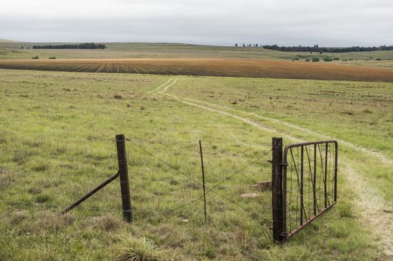 For Black SouthAfricans, Land Seizure Is a Question of Justice